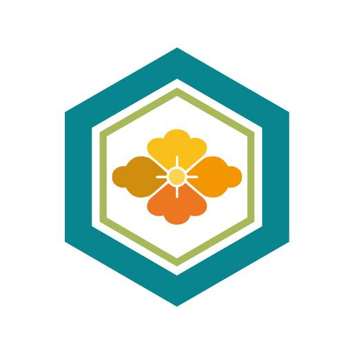 亀甲花菱[白]