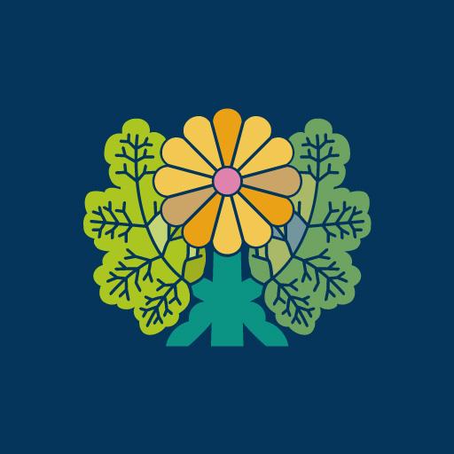 青山菊[藍]
